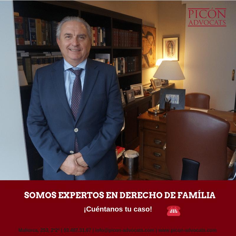 PROCEDIMIENTO ESPECIAL Y SUMARIO FAMILIA